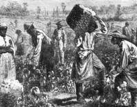 Vergovė kapitalo tarnyboje [3]