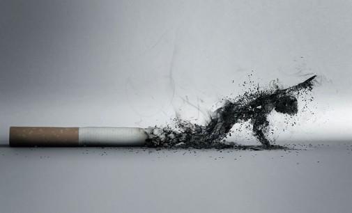 Mokslininkai: Rūkymas susijęs su gelbėjančių nuo vėžio bakterijų mirtimi