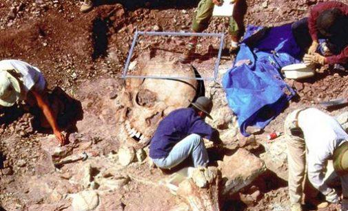 Žemėje gyveno milžinai – tai pripažino Smitsono institutas