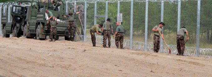 Vengrų deputatas pasiūlė atgrasyti imigrantus kiaulių galvomis