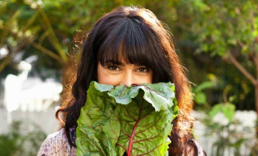 Vegetarų dieta – privalumai ir trūkumai