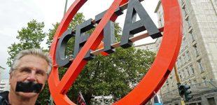 Seimo narys Mindaugas Puidokas teigia, jog CETA bus ratifikuota tik su saugikliu, apsaugančiu Lietuvą nuo GMO