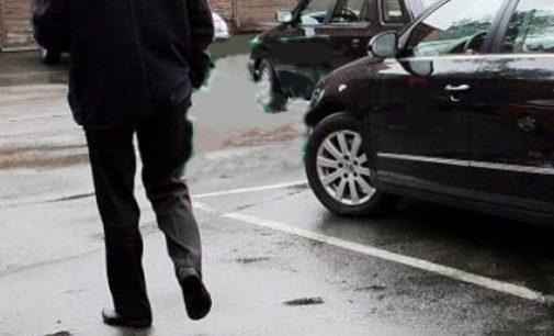 Seimas atėmė iš Seimo pirmininko pavaduotojų tarnybinius automobilius su vairuotojais