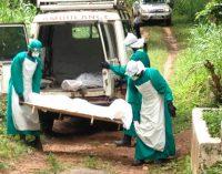 Mokslininkai pripažino naujosios vakcinos nuo Ebolos karštinės efektyvumą