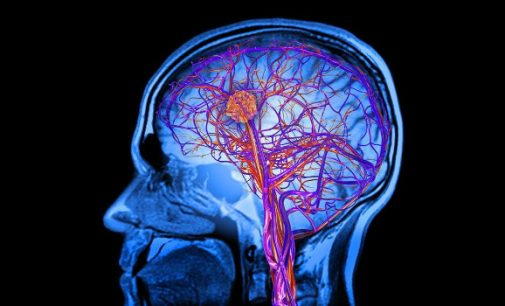 Dvikalbių žmonių smegenys dirba gerokai efektyviau