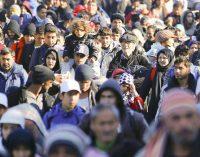 Seime domėtasi Lietuvos indėliu sprendžiant migracijos krizę ir pabėgėlių integraciją, kurios rezultatas -181 pabėgo iš šalies
