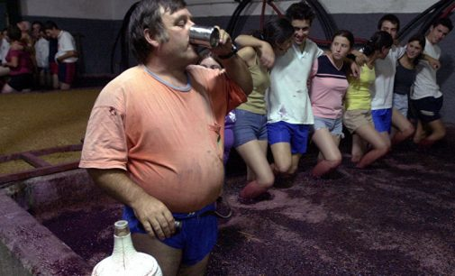 Štai kokia ji, Alkoropa: alkoholiniai europiečių pomėgiai