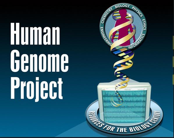žmogaus genomo projektas