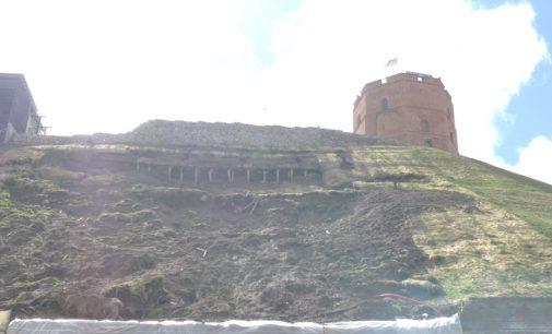 Romas Gudaitis: Apie Gedimino kalno tvarkymą Geležinio vilko dantyse