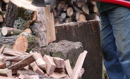 Valstybinės miškų urėdijos vadovas M Pulkauninkas prognozuoja, kad malkos ir biokuras dar brangs