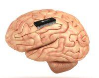 """Mokslininkai išrado ir sėkmingai išbandė atminties """"protezą"""""""