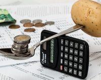Sava ekonomika arba alternatyva dabartinei pinigų ir mokesčių sistemai