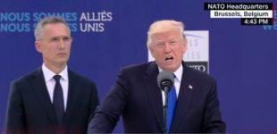 Donaldas Trampas sukritikavo NATO sąjungininkus