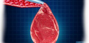 Misūris, pirmoji JAV valstija, kuri uždraudė mėsą iš mėgintuvėlių vadinti mėsa