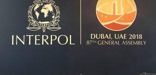 Ministras E. Misiūnas teigia, jog Rusija Interpolą gali panaudoti susidorojimui su Lietuvos pareigūnais