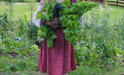 Apie jauną ūkininkę, kuri daržoves augina kitaip