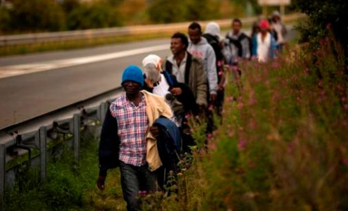 Seimas patvirtino JT globalios migracijos pakto susitarimą