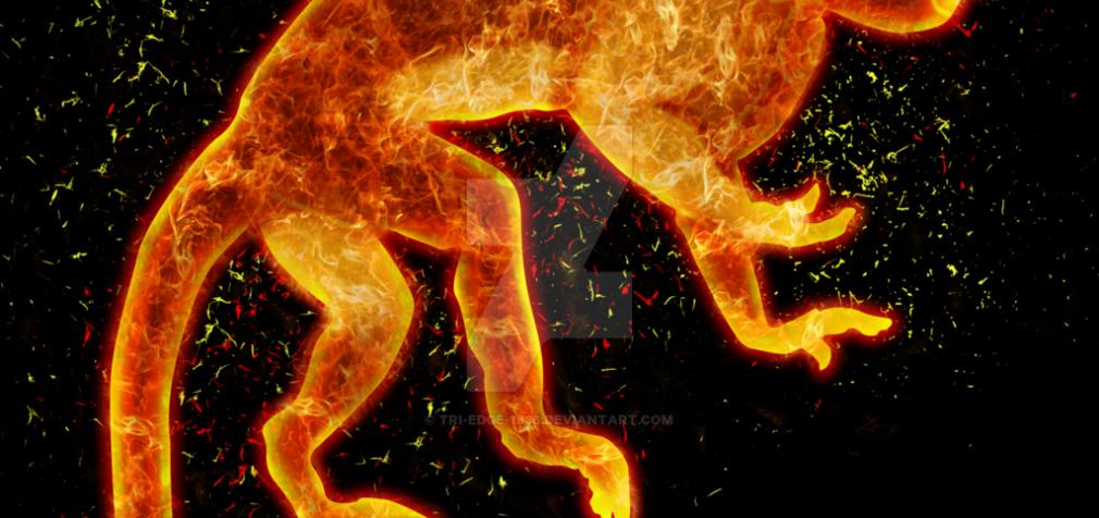 Ugninės Beždžionės 2016-ųjų  metų finansinis horoskopas