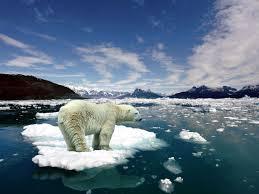 klimato kaita