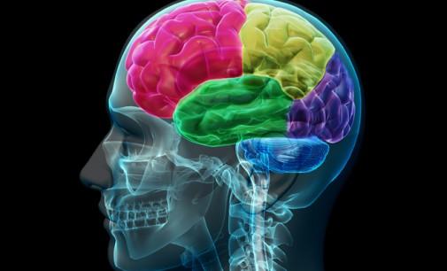 Smegenys neišeina į senatvės pensiją