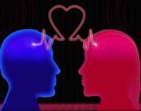 Meilė ir jai būtini, sudėtiniai jos cheminiai komponentai