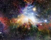 Ar visata gyva?