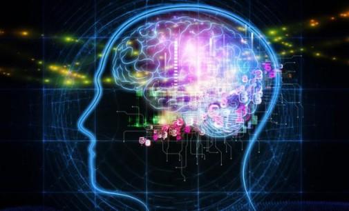 Kaip smegenys gali tapti ginklu kariškių (arba teroristų) rankose