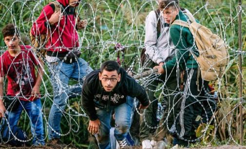 Migrantų pokeris arba bumerangas apsuko ratą