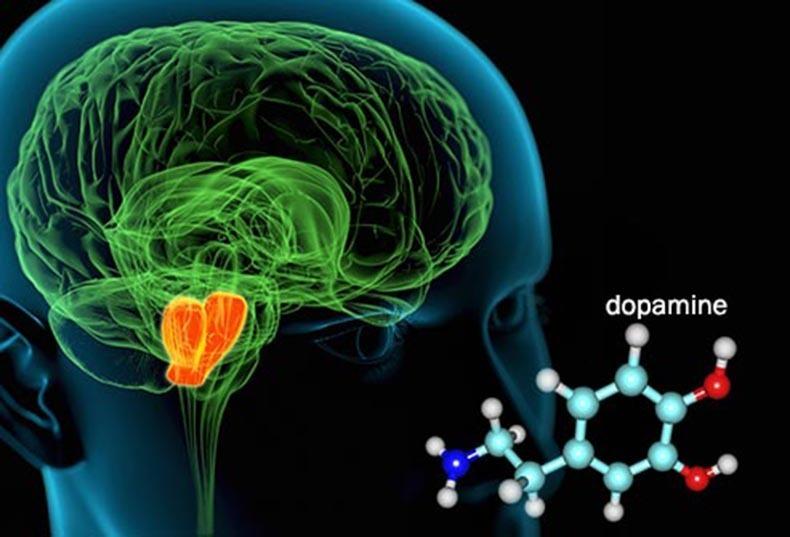dopaminas
