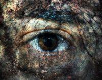 Nuo gyvulio iki žmogaus – psichikos sandaros tipai