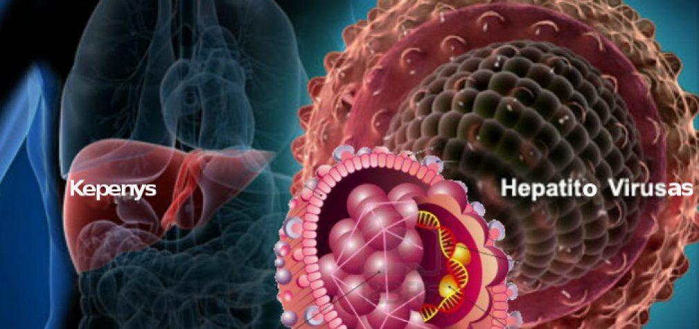 """Hepatitas """"C"""" – mitai ir tikrovė"""