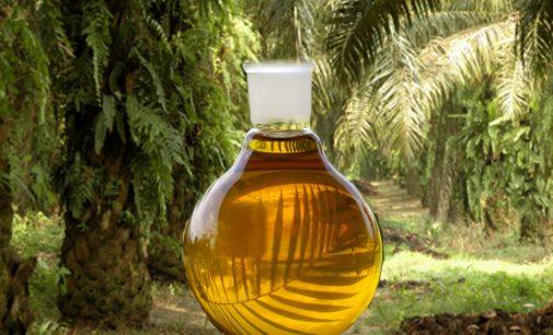 Nutella įtikinėja vartotojus dėl savo produkcijos su palmių aliejumi kokybės