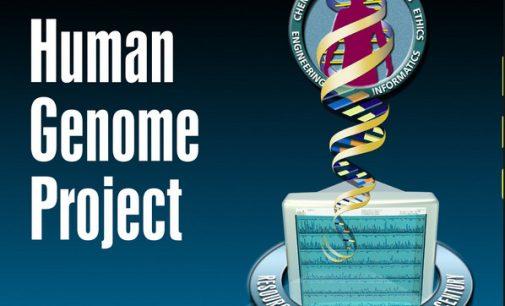 Klonavimas – biologai taps dievais