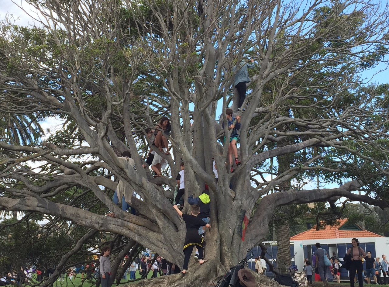 Vaikų medis