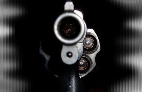 ginklas - revolveris