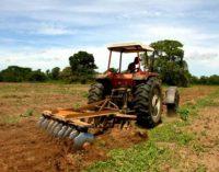 Smulkūs žemės valdos ar nedidelio ūkio savininkai galės įgyti bedarbio statusą ir gauti išmokas