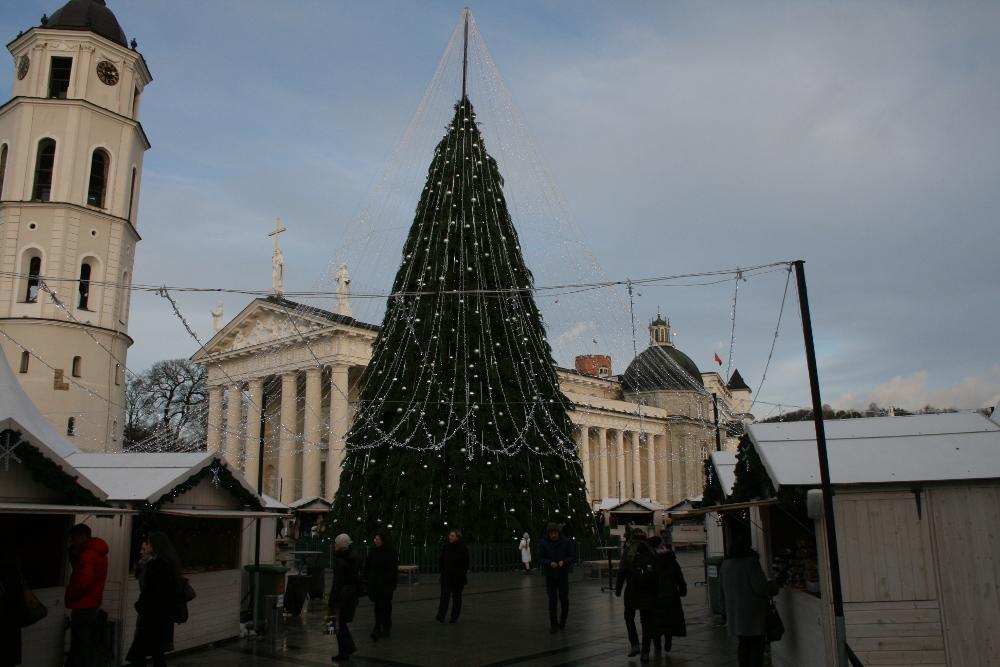 Vilniaus eglė