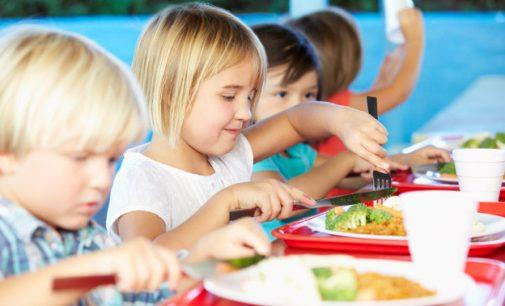 Seime skinasi kelią siūlymas nemokamai maitinti ikimokyklinukus ir pradinukus