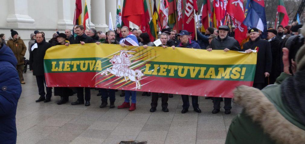 Švenčiant Kovo 11 – lietuvių eitynės Gedimino prospektu (video)