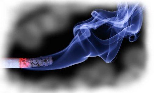Brangs tabakas