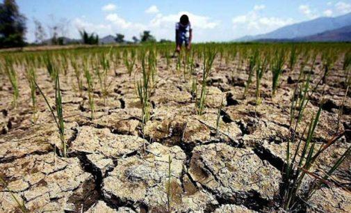 Klimato pasikeitimai iššauks ekonominį nuosmukį ir CO2 sumažėjimą atmosferoje