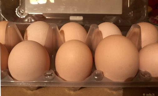 VMVT nurodo, jog Iš trečiųjų šalių įvežti kiaušiniai turi būti papildomai paženklinti