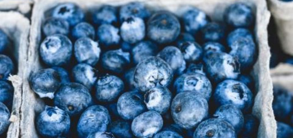 """VMVT nurodė perženklinti neatitikusias reikalavimų """"ekologiškas"""" mėlynes kaip neekologiškas"""