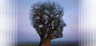 Kas tikrasis mūsų sąmonės šeimininkas?