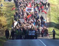 Labanoro žygis, į kurį žmonės susirinko iš visos Lietuvos [video]