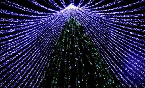 Nenugalimosios Saulės gimimo diena – Kalėdos