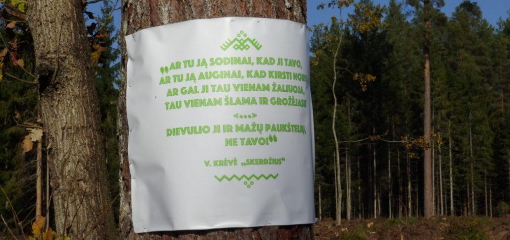 Virš 100 organizacijų ir įmonių kreipėsi į Vyriausybę, Seimą ir Aplinkos ministeriją dėl miško kirtimų griežtinimo saugomose teritorijose