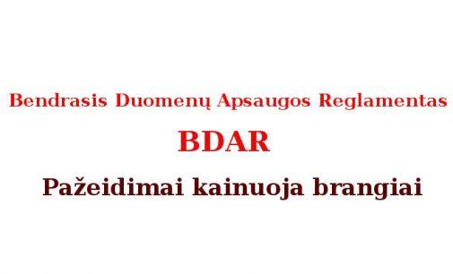 Lietuvoje skirta ženkli bauda už Bendrojo duomenų apsaugos reglamento (BDAR) pažeidimus