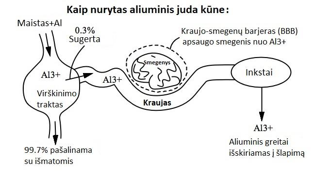 Kaip nurytas aliuminis juda kūne