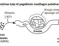 Skiepų sudėtyje esantis aliuminis: kelias į smegenis